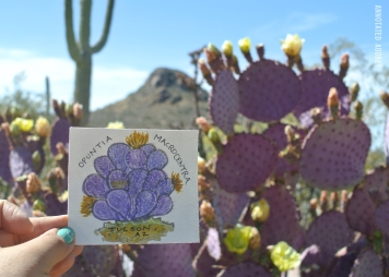 Greetings from Tucson Mail Art by Annotated Audrey 10