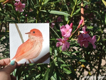 Greetings from Tucson Mail Art by Annotated Audrey 5