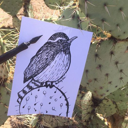Inktober day 8 Freddie the wren and his cactus friend.jpg