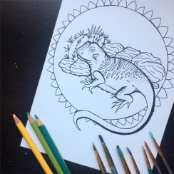Cactus and CrittersTucson Coloring Book By AudreyDLC (10)