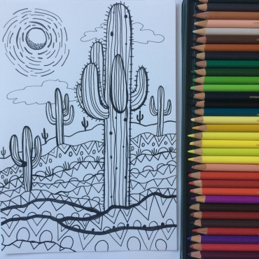 Cactus and CrittersTucson Coloring Book By AudreyDLC (6)