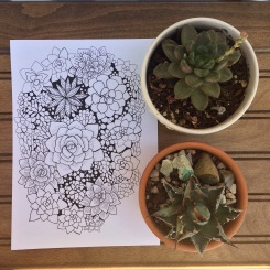 Cactus and CrittersTucson Coloring Book By AudreyDLC (7)