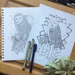 Cactus and CrittersTucson Coloring Book By AudreyDLC_The Barn Owl